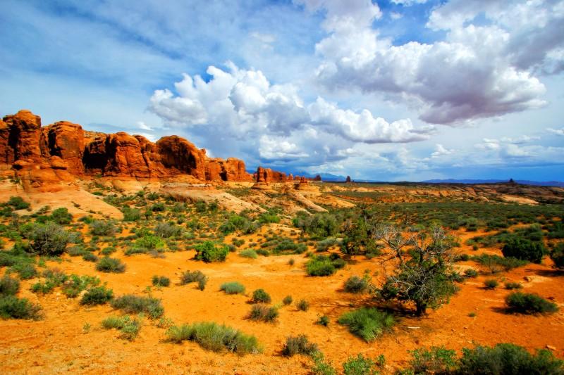 arches-landscape