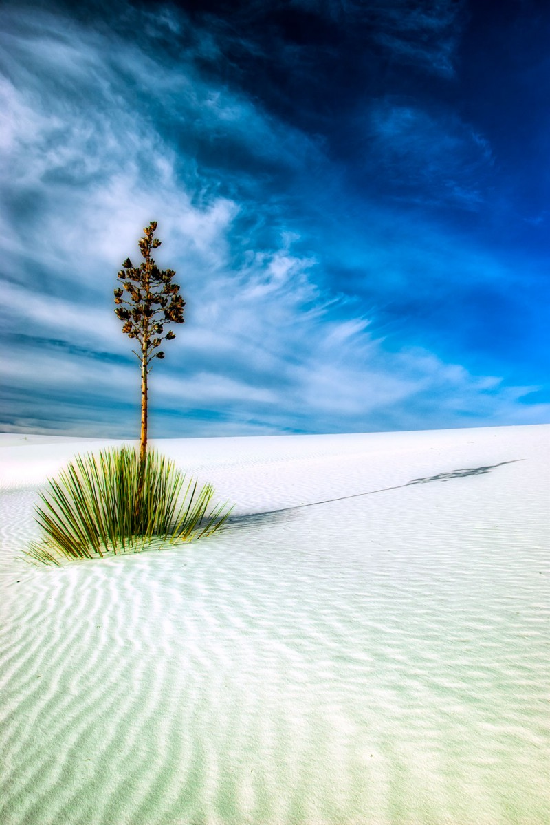 nm-white-sands-isolated